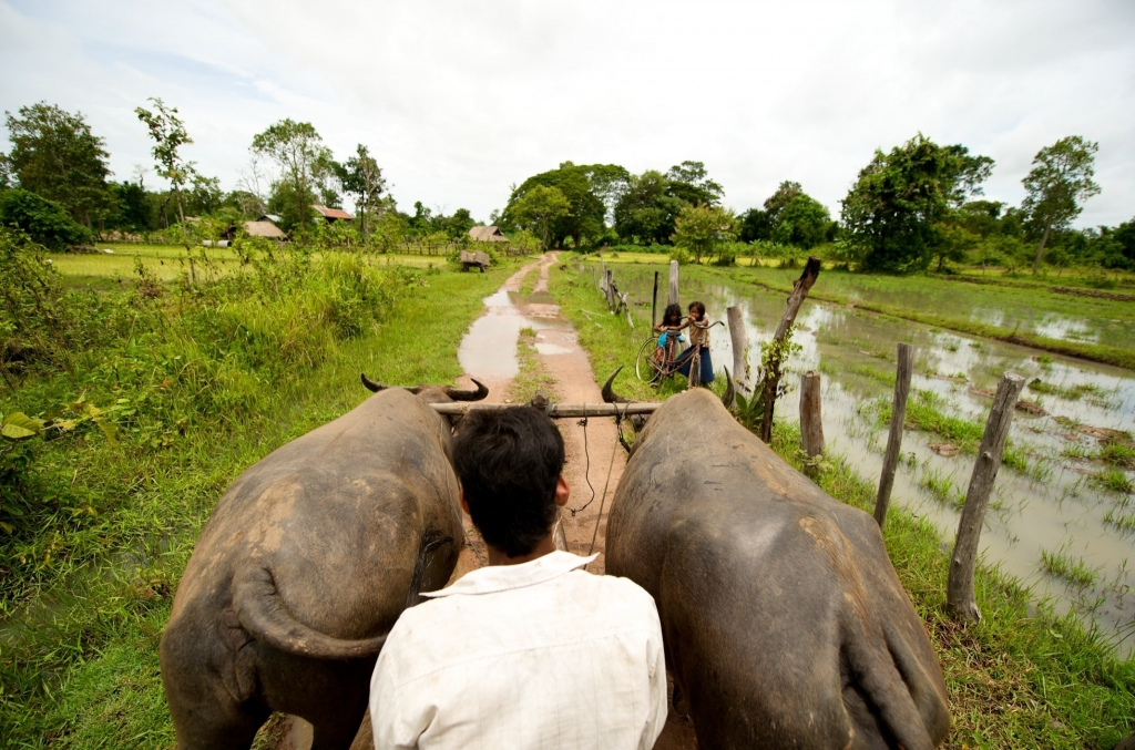 AlexSoh_July09 Cambodia164